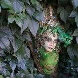 Горска елфа върху кора от дърво